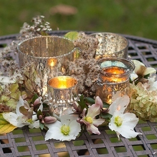 CHRISTMAS ROSES WITH SILVER LANTERNS