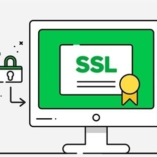 SSL SERTİFİKASI NEDİR?