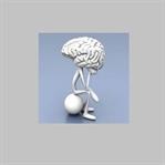 Beynimizin %90'ı ne işe yarıyor?