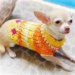 Sevimli Köpek Kıyafetleri