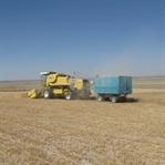 Tarım ve Kırsal Kalkınmayı Destekleme Kurumu