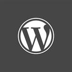 WordPress'te En Çok Yapılan Hatalar