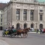 2 günde Viyana