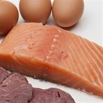 Atak Evresi 7 Günlük Saf Protein Listesi