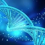 DNA tedavisi ile Zamana Karşı Durun