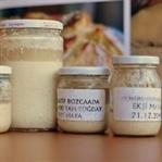 evde doğal ekmek yapımı için ekşi mayalar