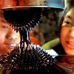 Ferromanyetik Sıvı (Ferrofluid)