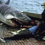 Korku Filmleri Korkumuzu Yenmemiz İçin 9 Neden