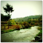 Nehirlerin suyu sadece akıp giden su değildir...