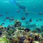 Yüzebilmeniz İçin En Muhteşem Yerler