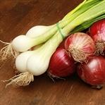 Madeira Usulü Soğan Çorbası