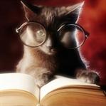 Türk Kitap Okuma Alışkanlığı ve Osmanlıca