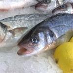 Balık Yerken Dikkat Edilmesi Gerekenler