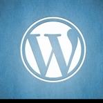 SEO için en iyi 10 Wordpress eklentisi