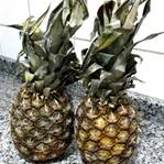 Ananasın içinde ANA var