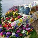 Çiçek Arabası