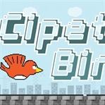 Cipet Bird,Google Play Oyunları Arasına Katıldı