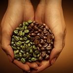 Yeşil kahve zayıflamaya etkili mi?