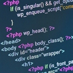 Programcılar İleri Zekâlı mıdır?