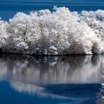 Kızılötesi fotoğrafçılık/İnfrared Fotoğrafçılık Ne