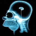 Beyin Hakkında Şaşırtıcı 8 Gerçek