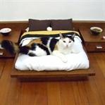 Kedisi Olanlar İçin Tasarlanmış 25 Harika Eşya