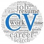 CV örneği indir