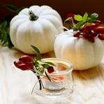 Herbstdekoration mit Kürbissen und Hagebutte