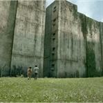 The Maze Runner / Labirent: Ölümcül Kaçış