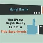 WordPress Yazı Başlığı Test Etme Eklentisi