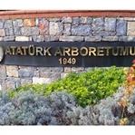Doğaya Dokunma Hissi Verecek: Atatürk Arboretumu