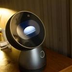 Evimizin Ferdi Olabilecek İlk Sosyal Robot Jibo