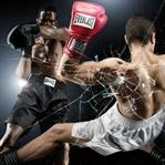 Hangi Dövüş Sporu Tam Sizlik? [TEST]