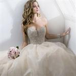 Prenses Gelinlik Modelleri 2015