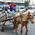 Brezilya-Porto Alegre'de Yaşam ve İnsanlar