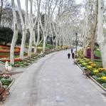 İstanbul Gülhane Parkı Kahvaltı, Nasıl Gidilir