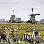 Hollanda'nın güzeli: Zaanse Schans