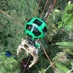 Google'dan Amazon ormanlarında bir ilk