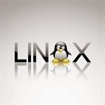 Linux (Çekirdeği) Işletim Sistemi