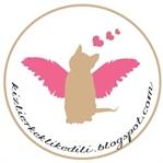 Hamilelikte ve Kedili Yaşam