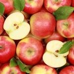 Her Gün 1 Elma Yemeniz İçin 11 Sebep