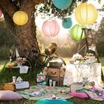 Piknik Yaparken Kenelere Dikkat