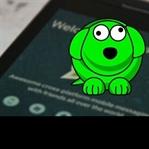 Whatsapp yuva mı yıkacak?