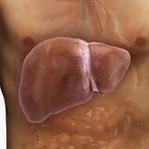 Ciğeriniz Yağlanmasın