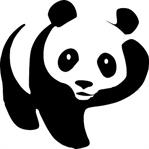 Kahve Falında Panda Sembolü