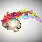 Beyin haritanızı değiştirin, hayatınız değişsin