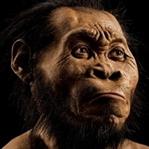 Homo Naledi ve diğer atalarımız
