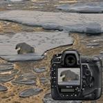 Yeni Nikon D5 İnceleme