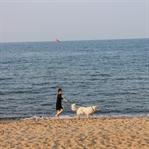 Baltık Denizi'ne Dokunmak : Gdańsk