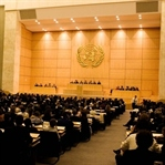 Birleşmiş Milletler Delegesi Olmaya Ne Dersin?